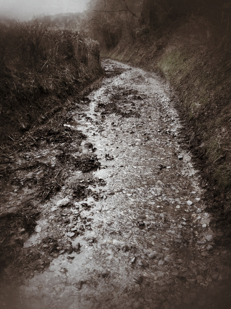 Road covered in water and mud