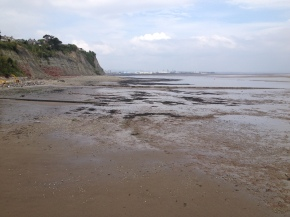 Low tide in Penarth