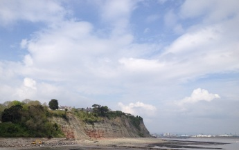 Penarth cliffs