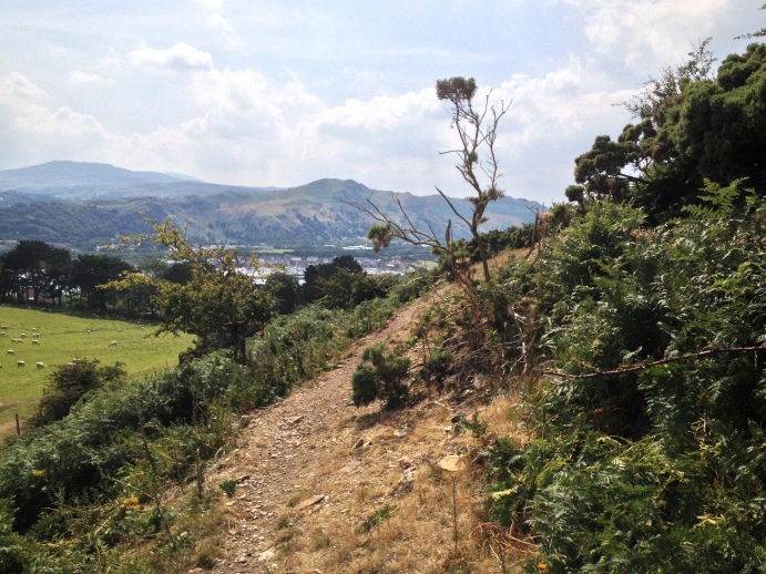 Another view of Conwy Mountain