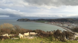 Great Orme Historical Walk