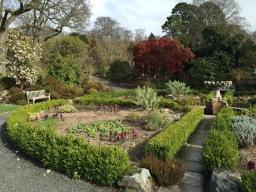 Bodnant Garden in March