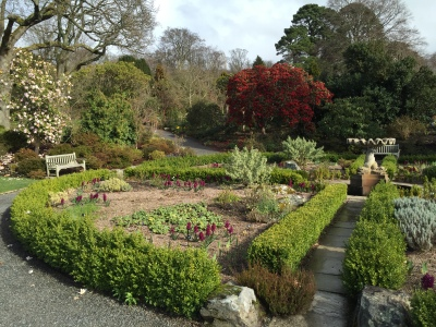 Garden with magnolias, rhododendrons, and hyacinths