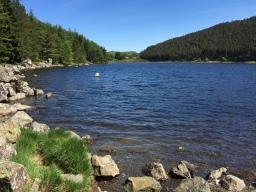 Llyn Geirionydd Walk