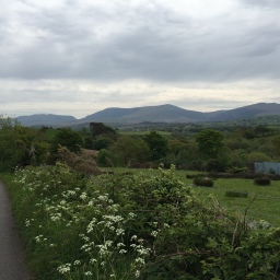 Pilgrim's Way: Day 7 (Penygroes to Clynnog Fawr)