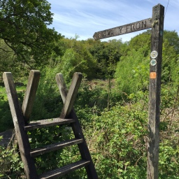 Pilgrim's Way: Day 6 (Llanberis to Penygroes)